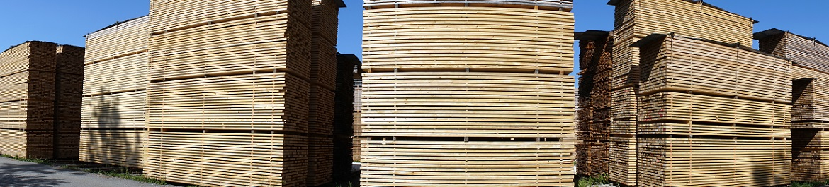 image panoramique pour WOOD industry